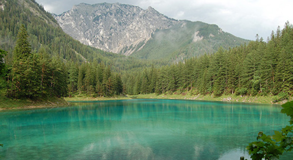 gruner-see-lago-verde