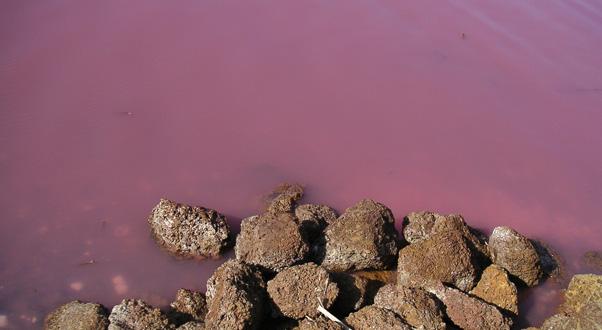 lago-rosa-lake-retba