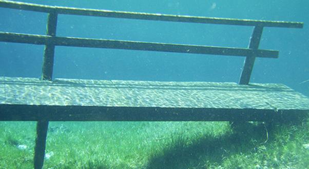 lago-verde-gruner-see
