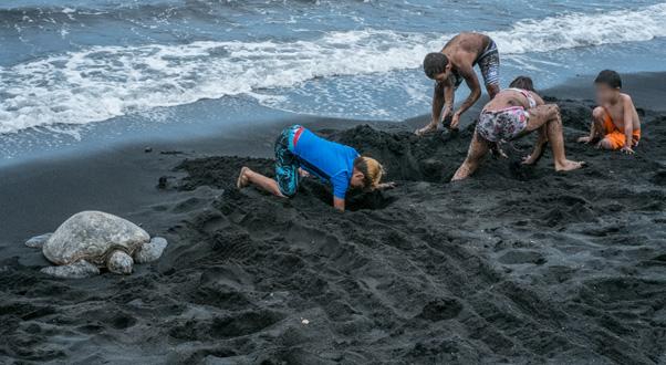 pulanuu-spiaggia-nera-hawaii