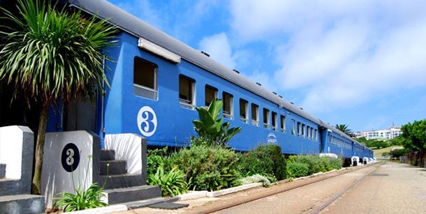 santos-express-train