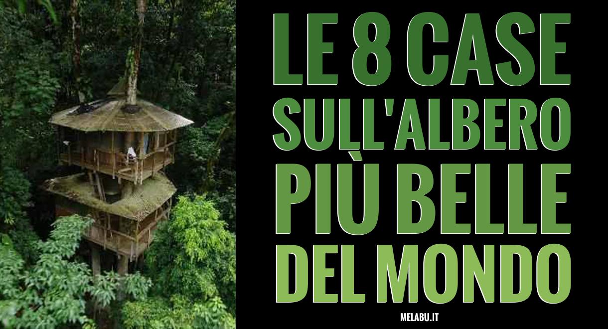 Le 8 case sull 39 albero pi belle del mondo for Le piu belle case del mondo foto