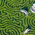 longleat-hedge-maze