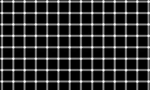illusioni ottiche (13)